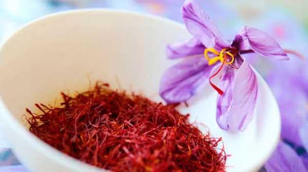 tinh chất nhụy hoa nghệ tây trong saffron collagen
